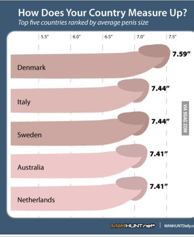 Pornstars size of Top 20: